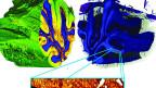 Tiefer Blick ins Kleinhirn: Forschende der Uni Basel schauen mit einem speziellen Röntgenverfahren genau ins Hirn.