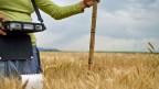 Das Verbessern der Landwirtschafts-Erträge darf nicht auf Kosten der Umwelt gehen. Unter anderem bedeutet das, das aufwändige Beackern der Felder zu reduzieren.