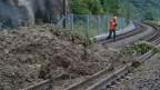 Ein Geologe überprüft den Erdrutsch auf den Gleisen der SBB-Strecke Bern - Lausanne am Sonntag, 13. Juli 2014 bei Flamatt.