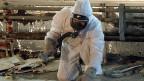 Asbest ist kein Fluch der Vergangenheit, Asbest ist ein aktuelles Problem. Bild: Asbestsanierungen im Werd-Hochhaus in Zürich, im Februar 2003.