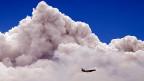 Grundsätzlich muss sich jede Gemeinde bewusst sein, welche Daten sie in eine Cloud auslagern kann - und welche nicht.
