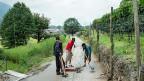 Asylbewerber aus Eritrea arbeiten in Lumino im Tessin im Strassenunterhalt.