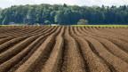 Der Bund will guten Ackerböden künftig zwar konsequenter schützen. Aber die zweite Raumplanungsrevision sieht Humustransporte ausdrücklich als einen Teil der Lösung.
