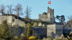 Höhenburg-Ruine Stein bei Baden. Die Eidgenossen zerstörten die Burg im Jahr 1415 erstmals. Die Stadt liess sie neu aufbauen, die Burg wurde jedoch 1712 während des Zweiten Villmergerkrieges erneut zerstört.