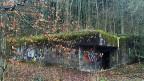Ein moosbedeckter Betonklotz von 20 Metern Länge und zehn Metern Breite: Bunker im Wald auf dem Bruggerberg.