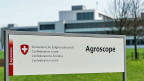 Hinter einem Doppel-Zaun mit Stacheldraht wollen die Wissenschaftler der eidgenössischen Forschungsanstalt Agroscope-Reckenholz die gentechnisch veränderten Kartoffeln anbauen.
