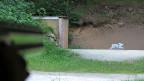 Schiessen sei wie Autofahren, ohne Routine gehe es nicht, meint eine junge Jägerin - und schaut dann auf den grauen Hasen am Waldrand, der auf Schienen vorbeirollt, er ist aus Karton.