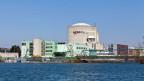 Wie gefährlich sind die Risse und Lufteinschüsse die im Stahl des Reaktorbehälters Beznau I nachgewiesen worden sind?