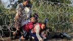 Zehntausende, hunderttausende Flüchtlinge haben es erlebt: Auf morschen Schiffen das Mittelmeer überquert, danach auf der sogenannten Balkanroute nordwärts. Bis Ungarn als erstes Land an seinen Grenzen Zäune hochzuziehen begann. Die Flüchtlinge kommen trotzdem.