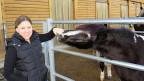 Vier Pferde und drei Ponys warten darauf, gefüttert zu werden. Während sie ihr Pferd tätschelt sagt Josiane Imboden, sie sei auf einem konventionellen Betrieb gross geworden, möchte aber nicht mehr tauschen.