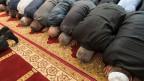 Die Hälfte der befragten Muslime im Erhebungsjahr haben nie einen Gottesdienst besucht.