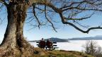 Das ältere Paar geniesst die Aussicht auf die Alpen über dem Nebel. Jüngere haben allen Anlass, sich um ihre Aussichten auf eine sichere Pension Sorgen zu machen.