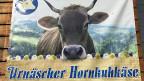 97 Prozent aller Kühe im appenzellischen Urnäsch haben Hörner. Das macht sich auch die dorfeigene Käserei zunutze, die «Urnäscher Milchspezialitäten AG».