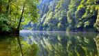 Das Problem sind die unsichtbaren Stoffe in Flüssen und Bächen, etwa Rückstände von Pflanzenschutzmitteln aus der Landwirtschaft oder Arzneimittelrückstände. Bild: Der Doubs in der Nähe von Le Theusseret im Kanton Jura.