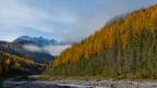 Die Initiative für eine Grüne Wirtschaft will den Ressourcenverbrauch der Schweiz bis 2050 um zwei Drittel reduzieren. Bild: Nationalpark bei Zernez.
