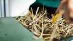 Die Mehrheit im Nationalrat entschied sich für die Version des Bundesrates: Alles soll beim Alten bleiben, der Anbau von gentechfreien Pflanzen für vier weitere Jahre verboten werden. Als nächstes kommt das Geschäft nun in den Ständerat.