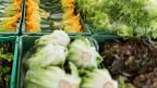 Wer Gemüse isst, isst auch Nitrat.