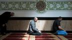 Mit der Charta wollen die albanischen Muslime der Mehrheitsgesellschaft die Angst nehmen. Bild: Gebet in der Moschee im Haus der Religionen.