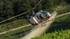 Ein Helikopter besprüht die Reben gegen Ungeziefer und Pilzbefall.