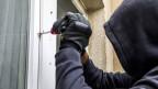 Obligatorische Landesverweisung auch bei Diebstahl und Hausfriedensbruch.