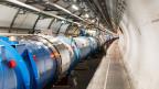 Der Teilchenbeschleuniger LHC der Europäischen Organisation für Kernforschung (Cern).