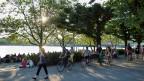 An der Seepromenade in Zürich kam es am Samstagabend zu einer Messerstecherei. Anschliessend wurde die Stadtpolizei angegriffen.