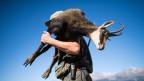 Ein Jäger trägt eine frisch geschosse Gämse. Symbolbild.