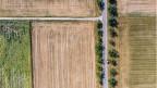 Wie die Schweizer Landwirte mit dem Klimawandel umgehen.