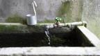 Wassertrog mit frischem Quellwasser.
