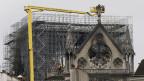 Wie weiter mit der Notre Dame?