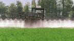 Ein Bauer spritzt Pflanzenschutzmittel auf seine Wiese.