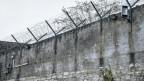 Im 20. Jahrhundert sperrten Behörden schweizweit mindestens 60'000 Menschen, ohne dass diese ein Delikt begangen haben und ohne Gerichtsverfahren, in mindestens 648 Anstalten weg.