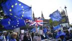 Brexit-Gegner demonstrieren vor dem Parlament in London/GB.