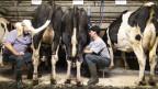 Bauern beim Melken. Symbolbild.