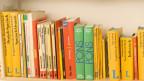 Haben die Fremdsprachen-Wörterbücher bald ausgedient?