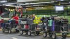 Im früheren Gepäcksortier-Logistikzentrum des Flughafens Genf.