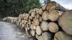 Holz von einem Sturmschadengebiet in der Gemeinde Escholzmatt-Marbach im Kanton Luzern. Archivbild von 2018.