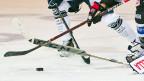 Schweizer Eishockey: Wird er mit dem Einsatz von mehr ausländischen Spielern attraktiver?