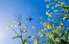 Flugreisen schaden dem Klima – viele Schweizer haben deshalb ein schlechtes Gewissen.