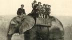 Sein Name bedeutete fortan «Grösse»: Elephant Jumbo.
