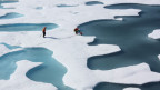 Der Klimawandel fordert seinen Preis: Schmelzendes Polareis, steigende Meeresspiegel,  Wirbelstürme, Dürren.