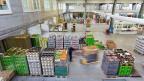 Importwaren sind seit der Aufhebung des Euro-Mindestkurses günstiger geworden.