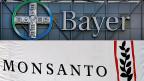 Dass Monsanto nun selbst Objekt der Begierde geworden ist, überrascht  - allerdings nur auf den ersten Blick.
