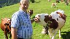 Bauer Hans Rösti in Kandersteg mit seiner Kuh Arlette.