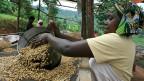 Viele der ärmsten Länder sind abhängig von einem einzelnen Wirtschaftssektor, etwa der Landwirtschaft. Die tiefen Rohstoffpreise der letzten Jahre haben diese Problematik noch verschärft.