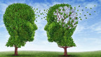 Die Alzheimer-Forschung kommt nicht voran.