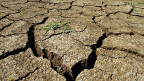Verdoppelt sich die Zunahme der globalen Temperatur von heute 0.8 auf künftig 1.5 Grad, so nehmen die extremen Hitzetage in einem Sommer um das zehnfache zu.