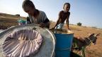 Wenn man den Menschen zeigt, dass sie ihr Trinkwasser durch einen Fetzen Stoff filtern können, so hält dies die Krebschen zurück, die von den Wurmlarven infiziert sind». Dies war und ist eine der wichtigsten Massnahmen von Donald Hopkins. Bild aus Ghana.