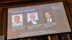 Es ist den neuen Chemie-Nobelpreisträgern gelungen, Moleküle künstlich im Labor herzustellen, die zielgerichtete Bewegungen ausführen, wenn Energie in Form von Licht oder auch Wärme dazugegeben wird.