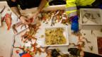 Die Forscherinnen und Forscher sortieren und bestimmen den Fang aus dem Schleppnetz.